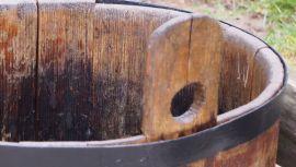 Cebrzyk drewniany