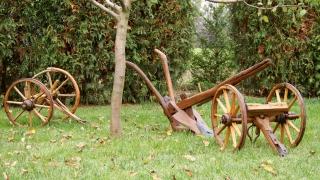 Kolce do pługa drewniane (tyliszki)